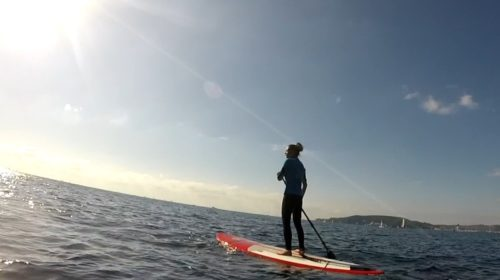 Paddle Fit&Tips